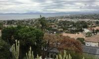 view and backyard