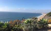 ocean bluff views